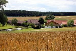 Der Thalhauser Hof liegt idyllisch auf dem Land im Rottal