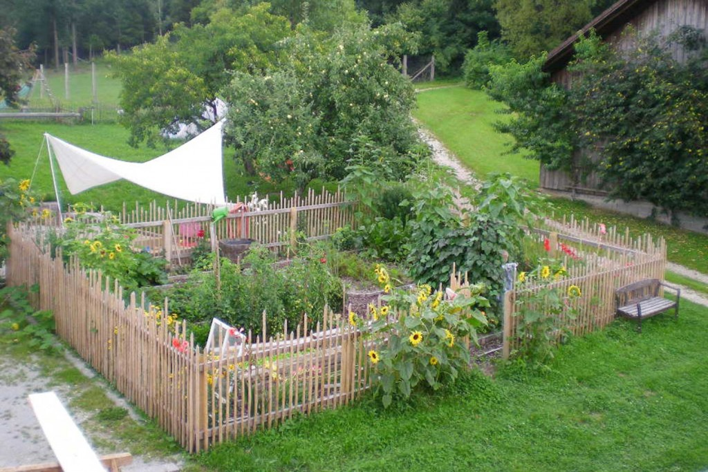Gemüse aus dem eigenen Garten.